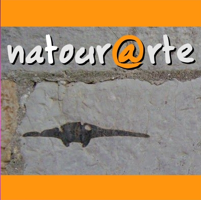 Natourarte – Visite Guidate in Toscana/ Guided Tours in Tuscany