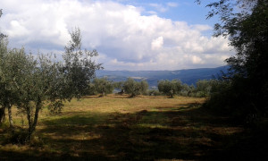 mistero-etrusco_panorama